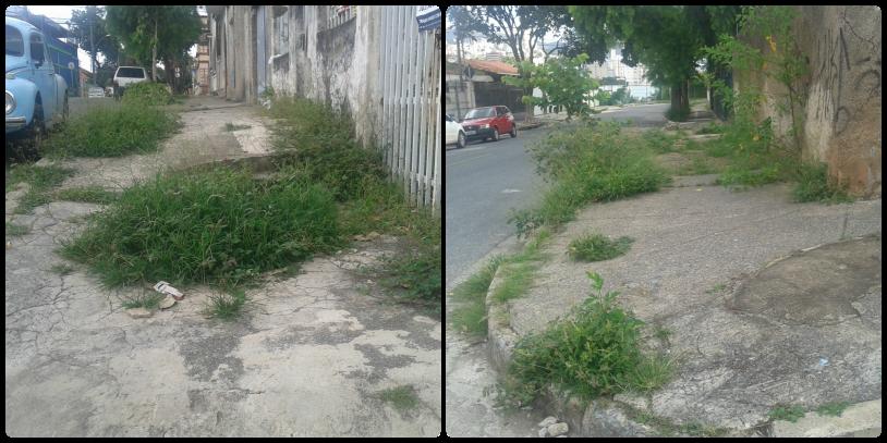 calçadas com mato na rua ângelo rabelo