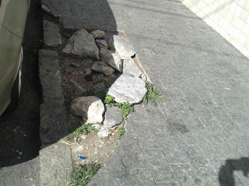 Buraco de árvore na Rua Mármore. | Foto: Sérgio Verteiro
